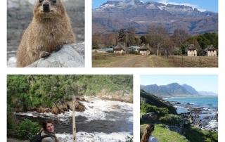 Tips rondreis Zuid-Afrika