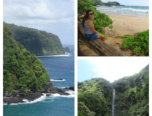 Vijf keer bijzonder Maui!