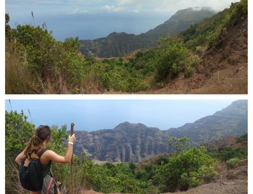 Alles wat je moet weten voordat je de Nu'alolo Trail gaat lopen (en een huwelijksaanzoek!)