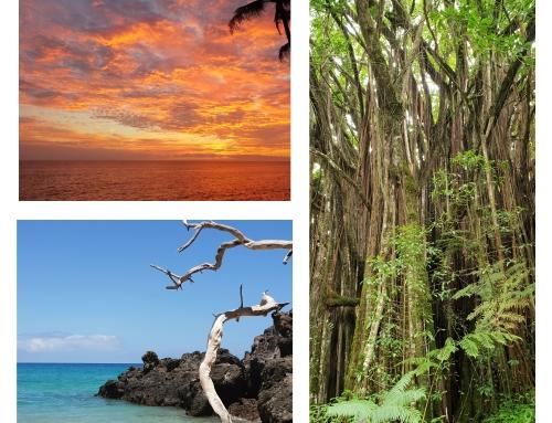 Big Island: het eiland van uitersten!