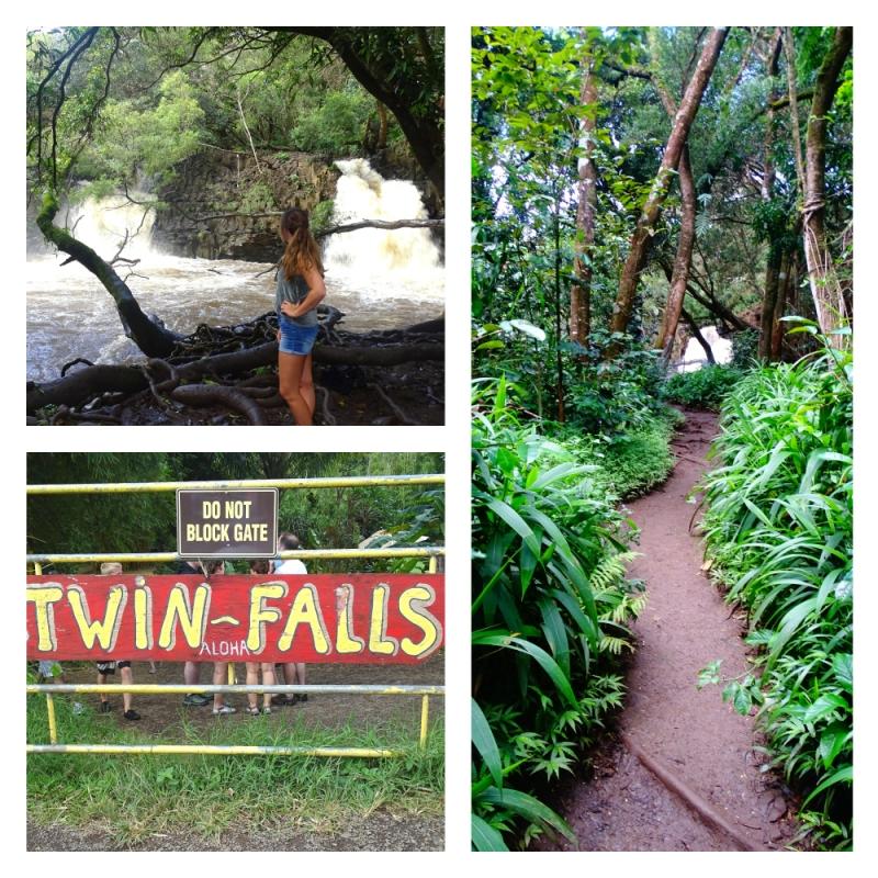 Twin Falls tijdens Road to Hana