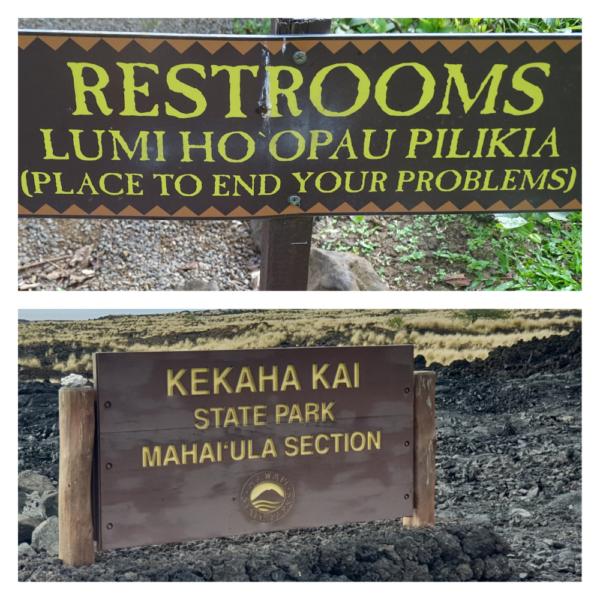 Hawaiiaanse taal