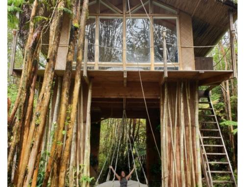Bijzonder overnachten op Big Island: slapen in een boomhut