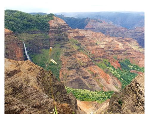De mooiste en meest bijzondere foto's van Hawaii
